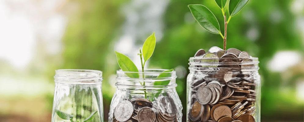 چگونه از طراحی پول در بیاوریم